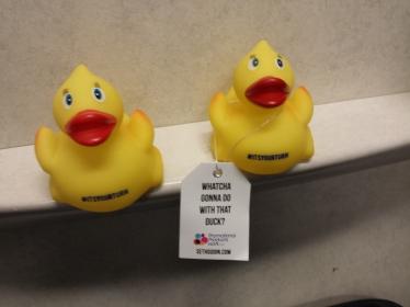 seth godin duck promotional